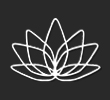 pulse lotus logo design
